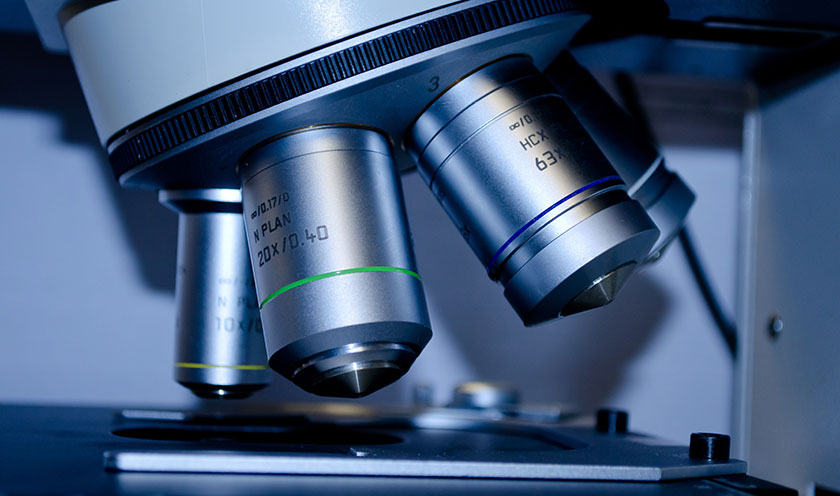 Stuart Therapeutics Announces Positive Retinal Indication in vitro Results for PolyCol